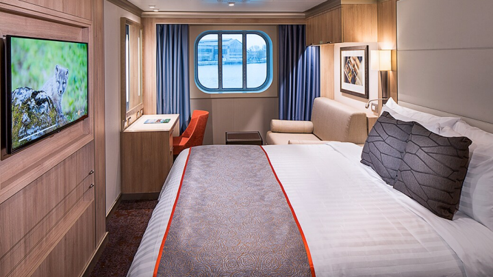 Large Oceanview Stateroom – [F]